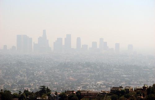 causes effect haze essay