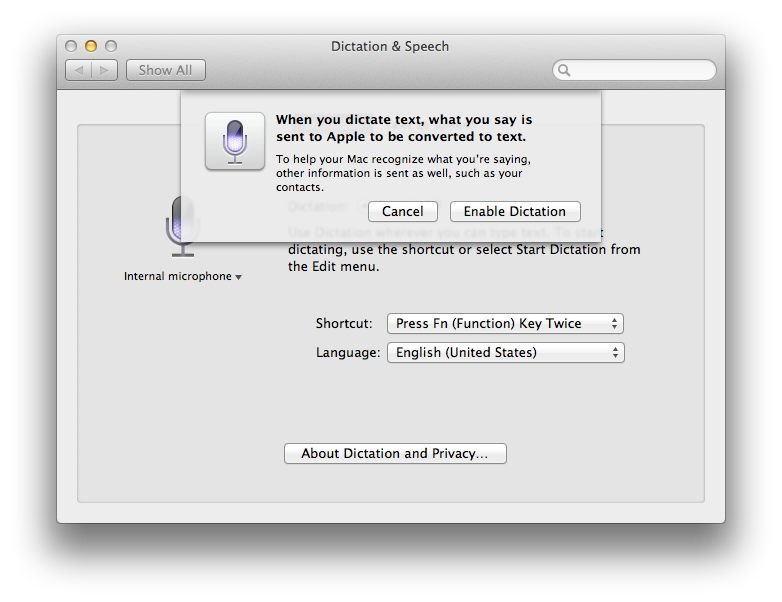 This warning appears when enabling the dictation feature.