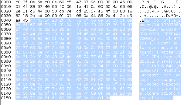 """The application data highlighted in a raw packet from a Web """"get"""" request captured by NetShark, a packet capture tool."""