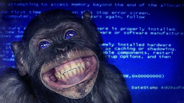 http://cdn.arstechnica.net/wp-content/uploads/2012/10/bluescreen-monkey.jpg