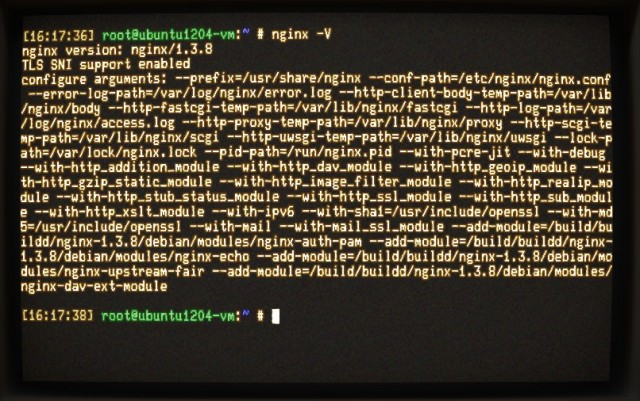 Checking our version of Nginx, with its compiled modules.