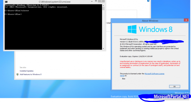 "Alleged Windows ""Blue"" screenshot."