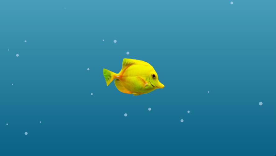 Fishy Friend.