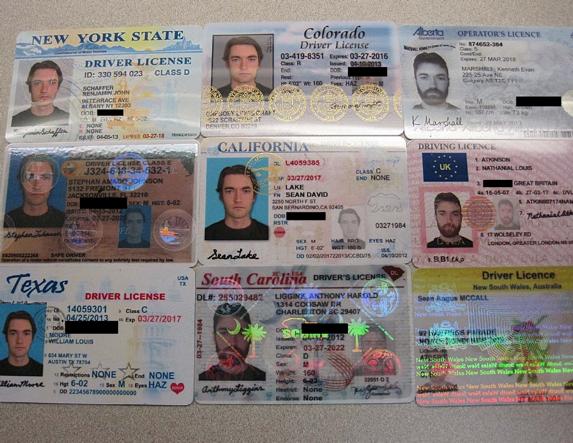 The US government claims these are Ross Ulbricht's fraudulent identification cards.