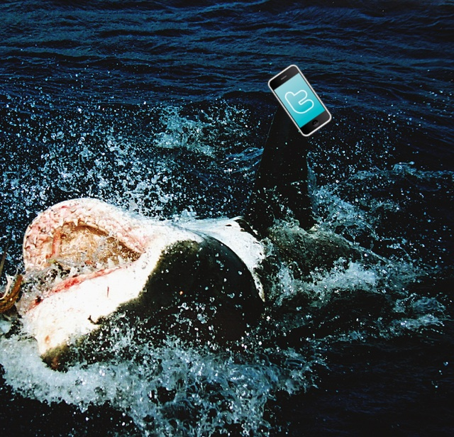 Artist's conception of a shark tweeting.
