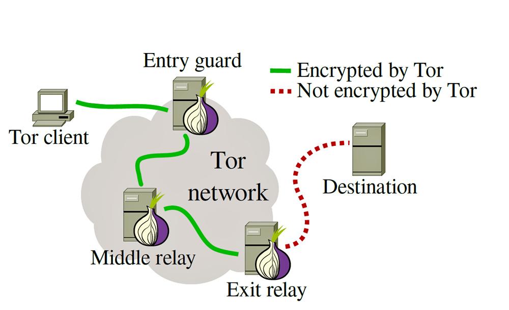 Tor скачать бесплатно на русском - фото 10