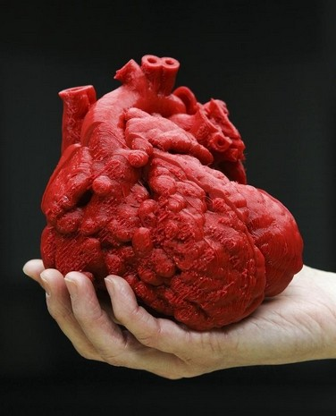 A 3D model of the heart of Roland Lian Cung Bawi, 14 mos. Engineers at UofL's Speed School created the model in three sections to help doctors at Kosair repair the heart.
