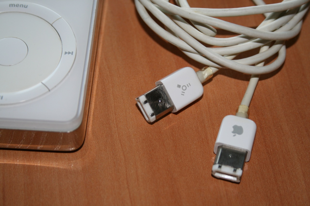 FireWire had its advantages and was usually faster than contemporary USB ports, but it was never able to gain widespread adoption.