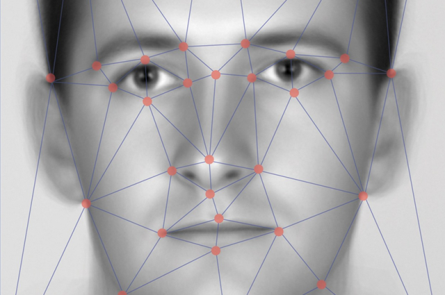 biometric face recognition system
