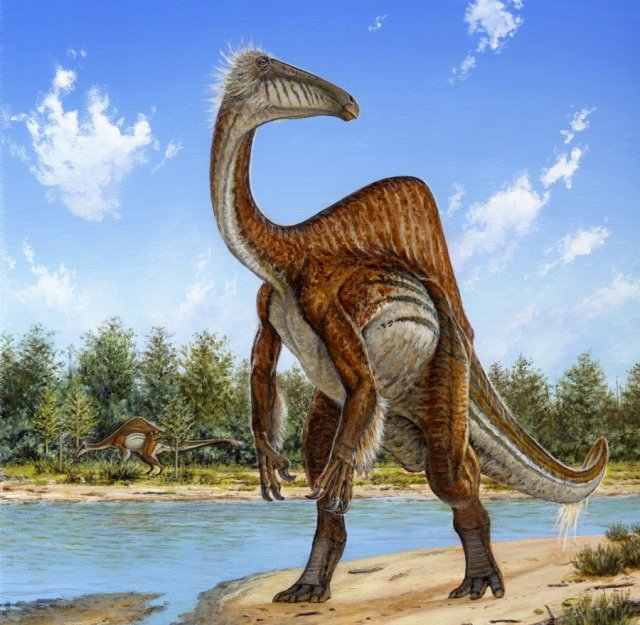 Bizarre dinosaur matched to an enormous set of arm bones