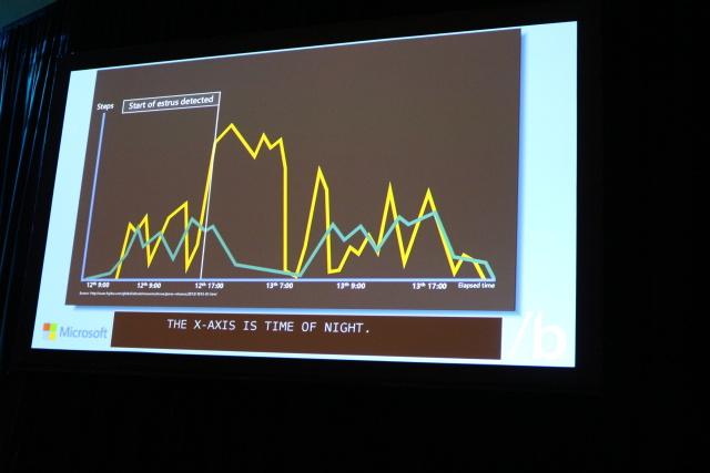 Bust a moove: blue line shows normal cow movement data, while yellow shows movement of cow in heat.
