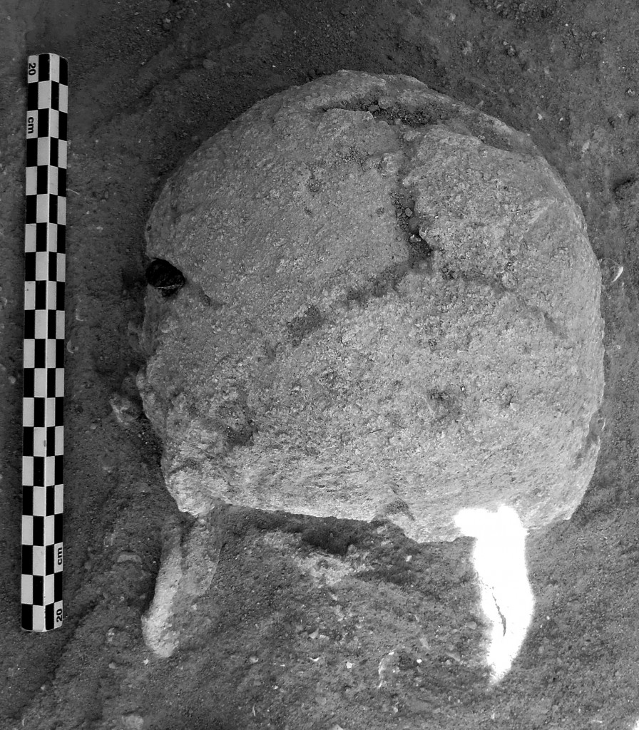 Here you can see an obsidian bladelet embedded in the victim's skull on the left side.