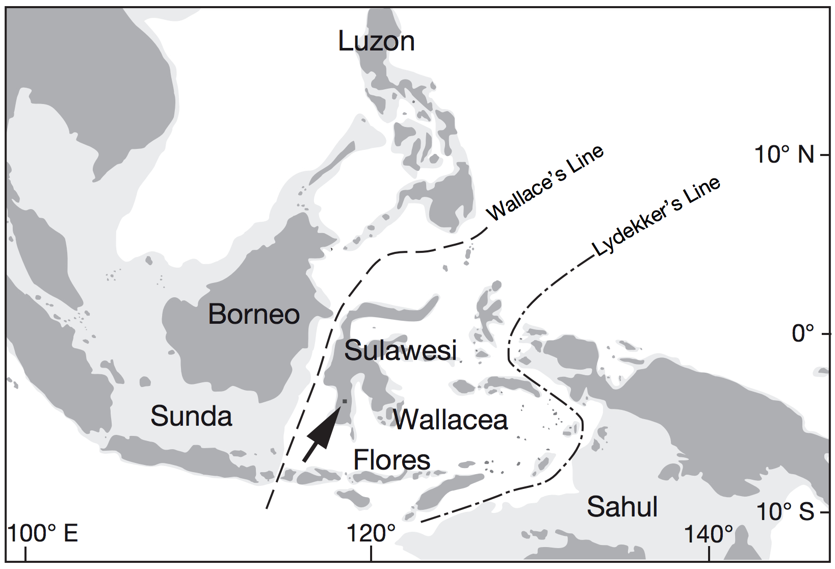 Here you can see the region where the tools were found. Exposed land during periods of low sea level (−120 m) during the Pleistocene is lightly shaded. Talepu Area indicated by an arrow.