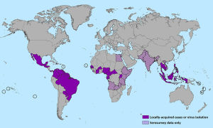 Countries that have past or current evidence of Zika virus transmission, as of January 2016.