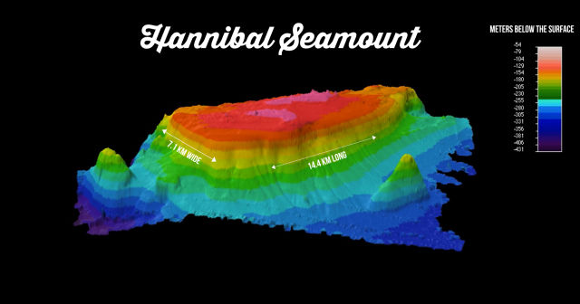 A 3D rendering of Hannibal Seamount. The crab patches were found on the northwest slope.