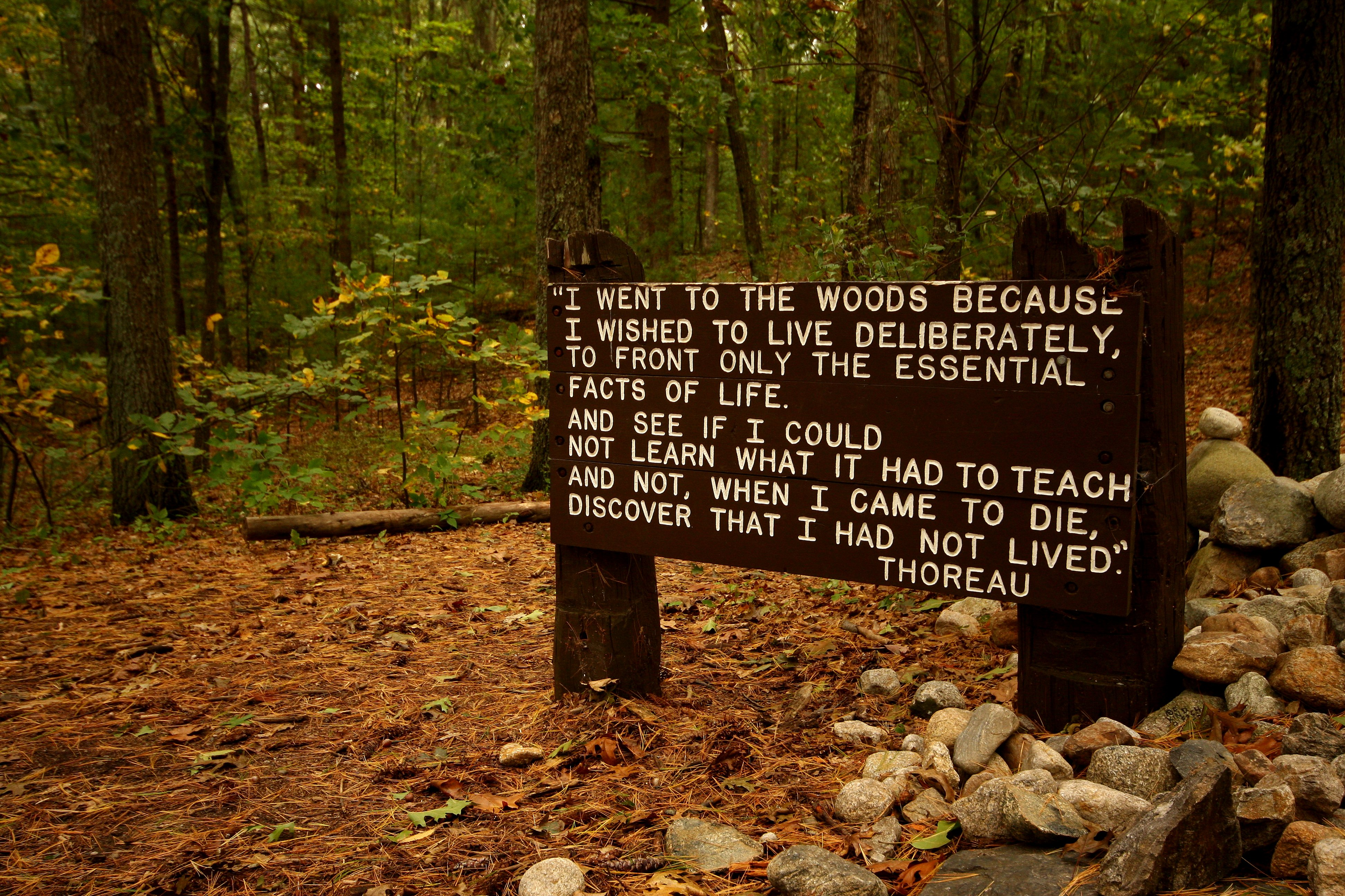 On Walden Pond, a place whose sanctity is untrammeled by our furious modern noise.