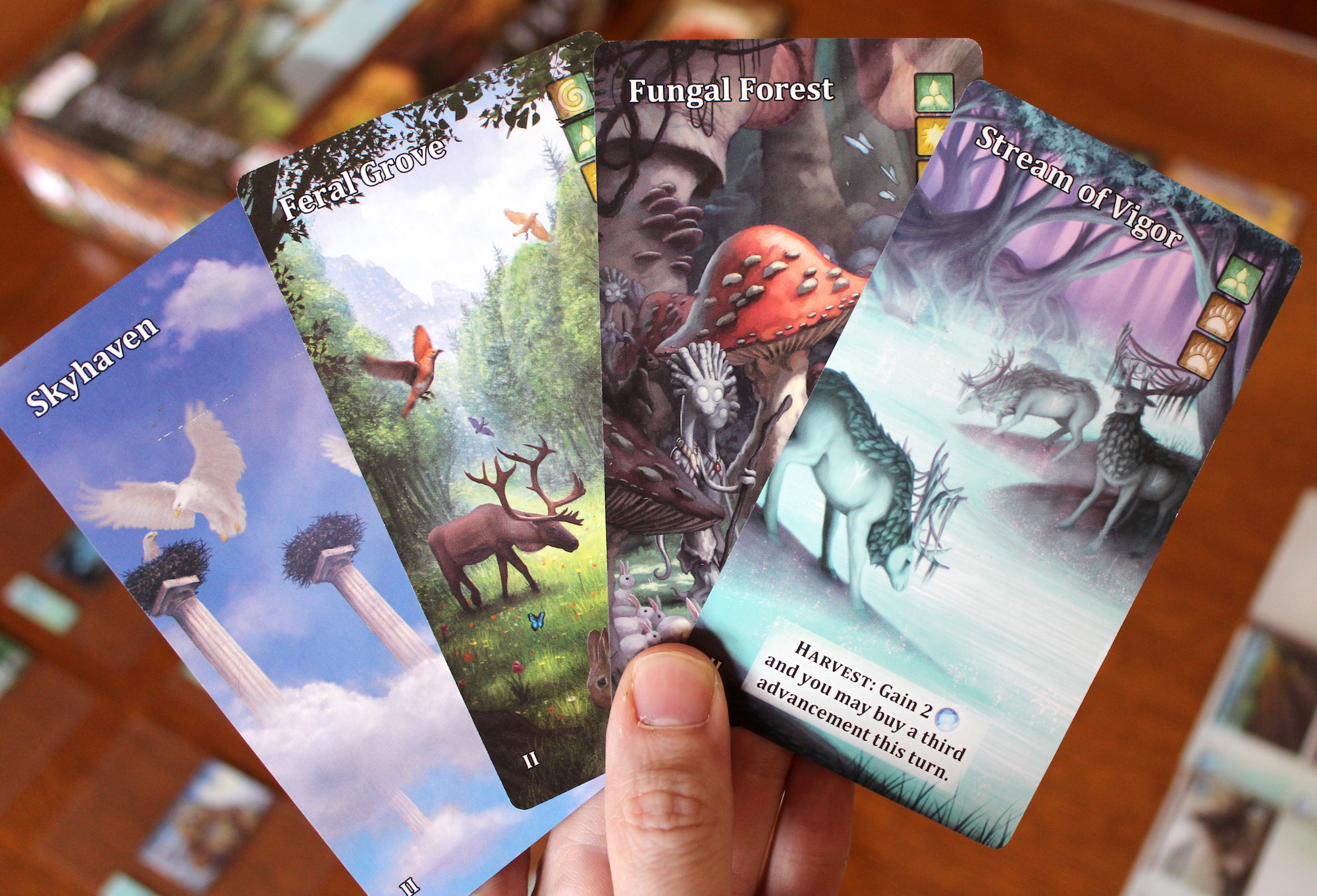 The art, especially on the vale cards, is terrific.
