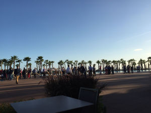 Aruba Networks' poolside party cautiously viewed from afar. No sign of gun-slinging androids just yet...