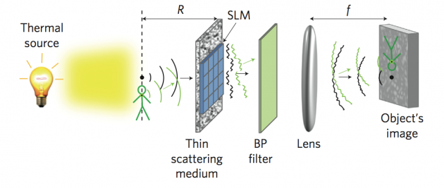 The Spatial Light Modulator (SLM) changes the wavefront of the light, while the bandpass (BP) filter gets rid of any light that is still scattered.