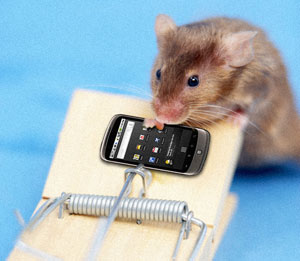 Cell phone radiation may fight Alzheimer's... in mice