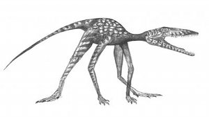 Artist's reconstruction of cat-sized stem dinosaur <em>Prorotodactylus</em>