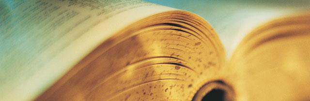 Kindle 3: e-book readers come of age