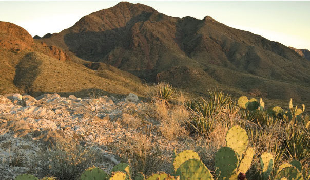 The Franklin Mountains of Texas