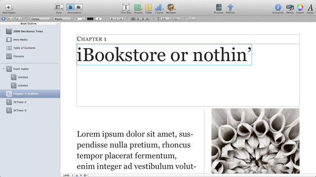 Enthusiasm for iBooks Author marred by licensing, format issues