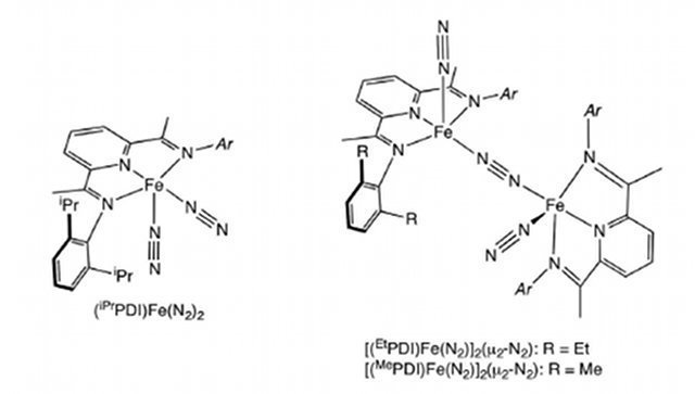 Bis(imino)pyridine iron dinitrogen complexes used to replace precious metal catalysts