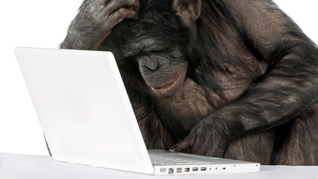 Why humans have computers, and chimps are stuck with sticks