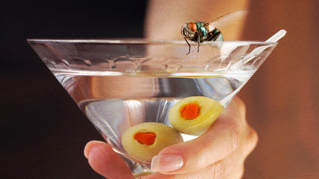 A lack of sex drives flies to drink