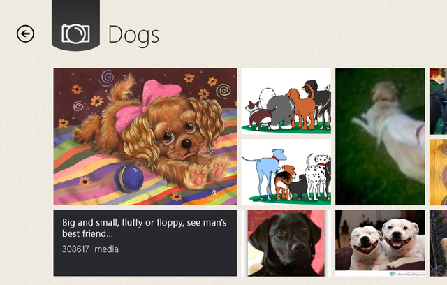 Photobucket's Metro-style application for Windows 8