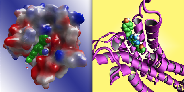 Simulated images of compounds studied in pharmaceutical research