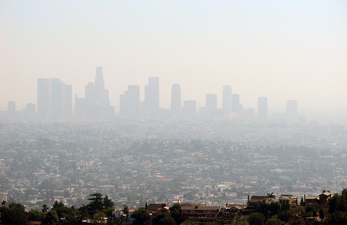 LA smog: more cows than cars?