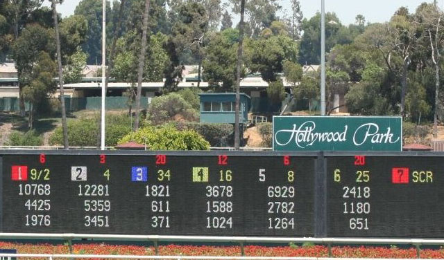 A nag running at Hollywood Park might have better odds at being in the money than Oracle
