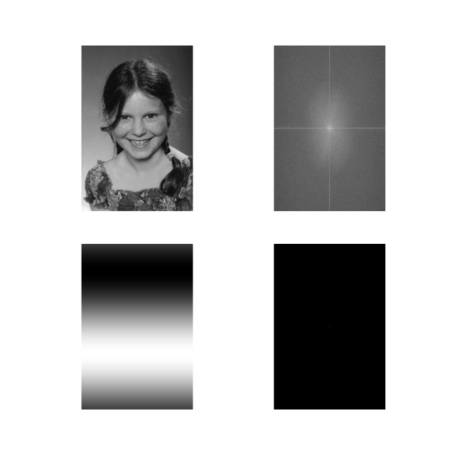 Top left: original picture. Top right: spatial frequencies that make up the image. Bottom right: all spatial frequencies except the lowest removed. Bottom left: resulting copy of the original image.