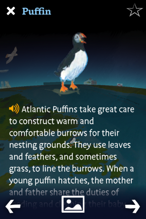 Want a man to read to you about the Atlantic Puffin? There's an app for that.