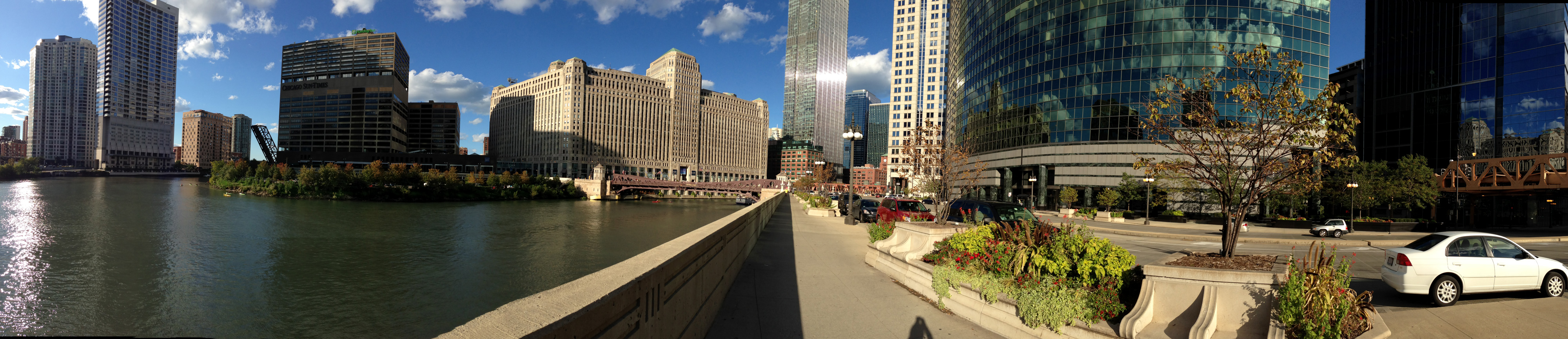 Another gratuitous view of downtown Chicago—why not?