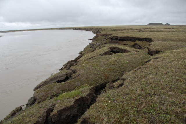 Thawing permafrost along the Sagavanirktok River in Alaska.