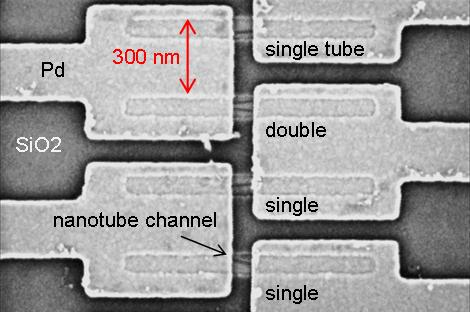 Carbon nanotubes sit on top of features etched in silicon.