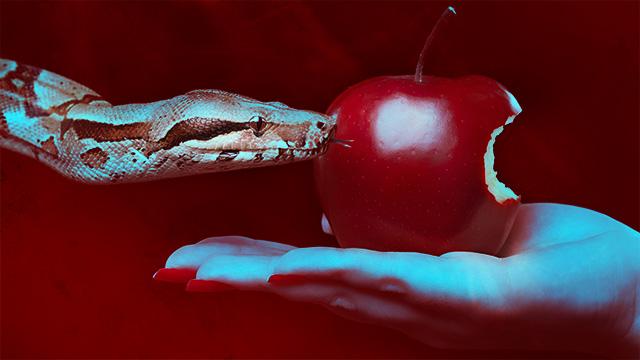 Apple's secret garden: the struggle over leaks and security