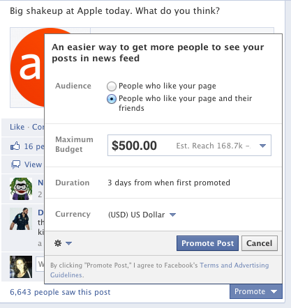 The promote-a-post window on Facebook for a fan page.