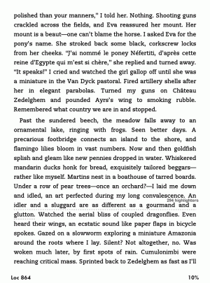 A page from the novel <em>Cloud Atlas</em>, at its smallest text setting.