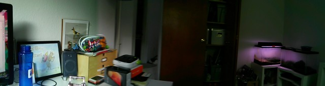 Panorama doesn't do a good job of stabilizing the image as the phone is moving.