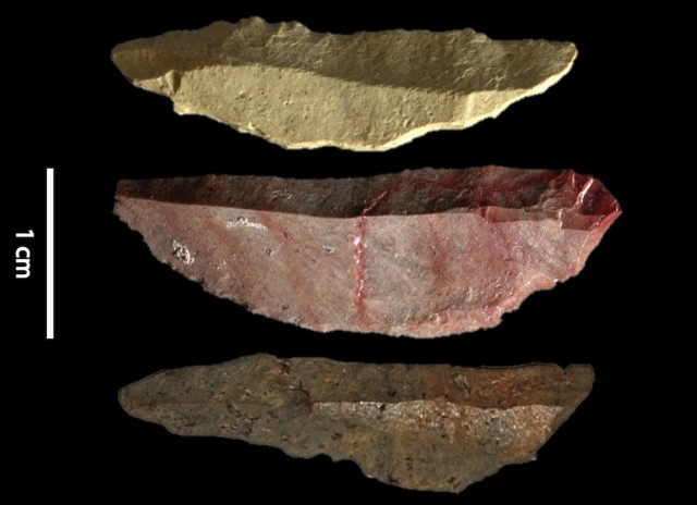 Stone tools hint at the origins of the modern human mind