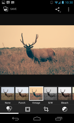 This elk has been officially hipster-ified with the help of Android 4.2's built-in photo filters.