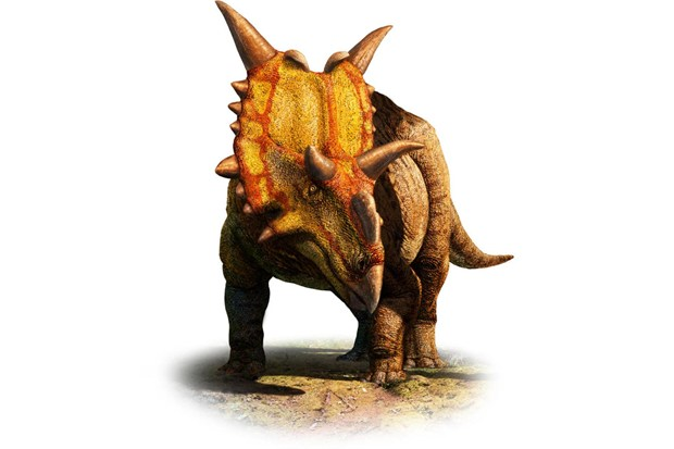 Xenoceratops: the 'alien horned-face' dinosaur discovered in Canada
