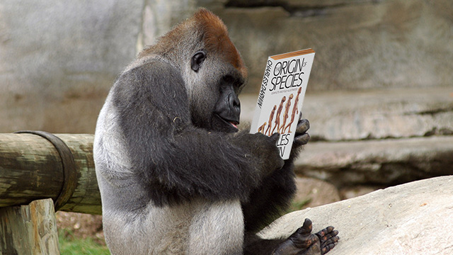 Ars Technicast, Episode 15: Read any Darwin lately?