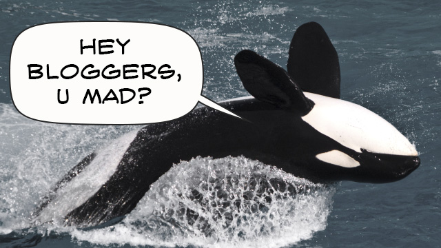 Orca was no fail whale, says Romney's digital director
