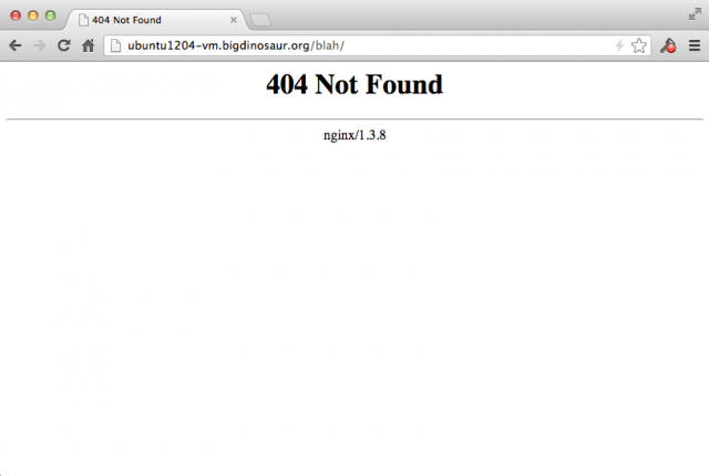 The built-in HTTP 404 page.